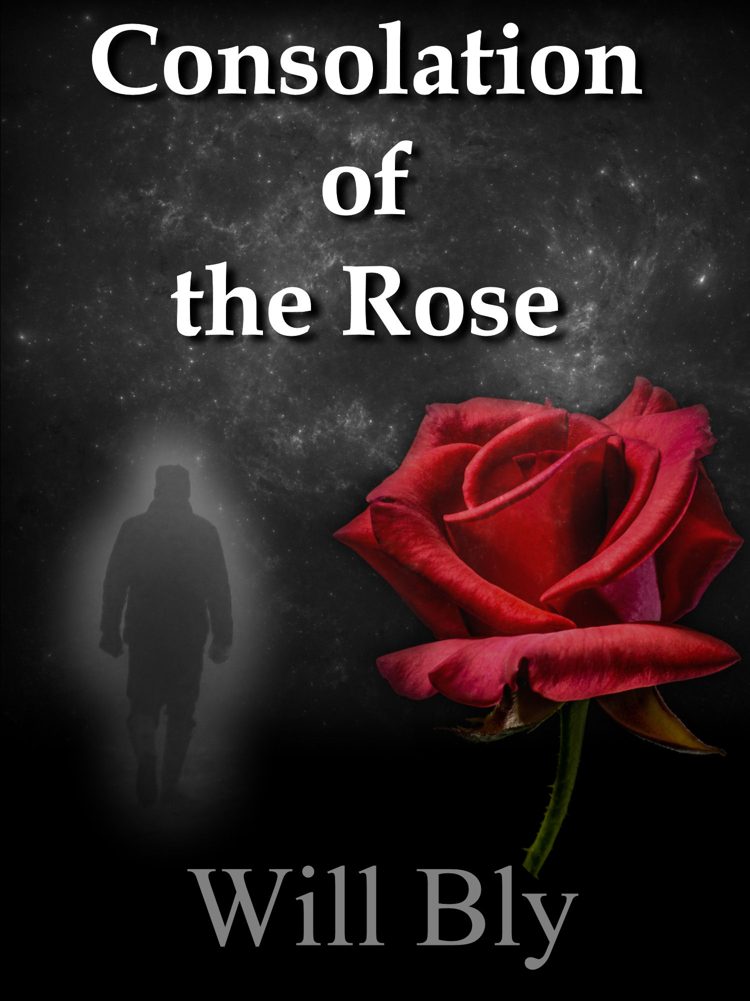 Consolation of the Rose by Will Bly